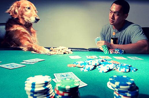 полублеф в покере